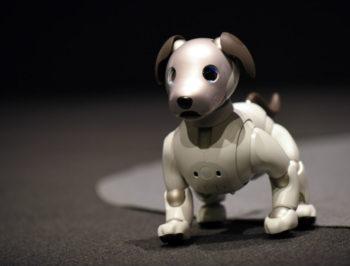 Sony presentó la nueva versión de su perro robot